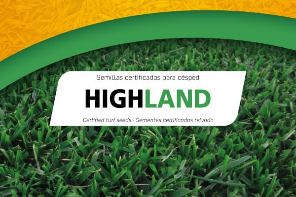 Semillas Highland Professional Mix