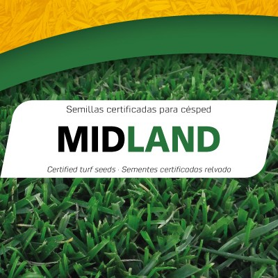 Semillas Midland Professional Mix