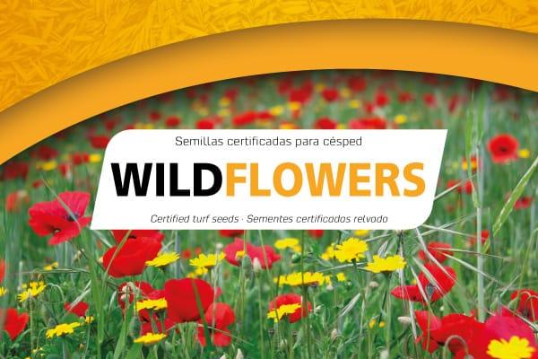 3718-imagen-semillas-wildflowers-logo