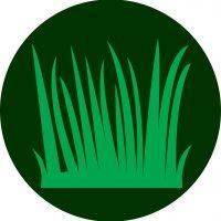 icono Botanica Especies céspitosas