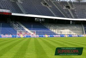 Mezcla_semilla_cesped_supercopa