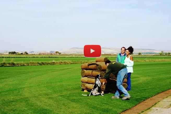 aqui_la_tierra_zulueta_video