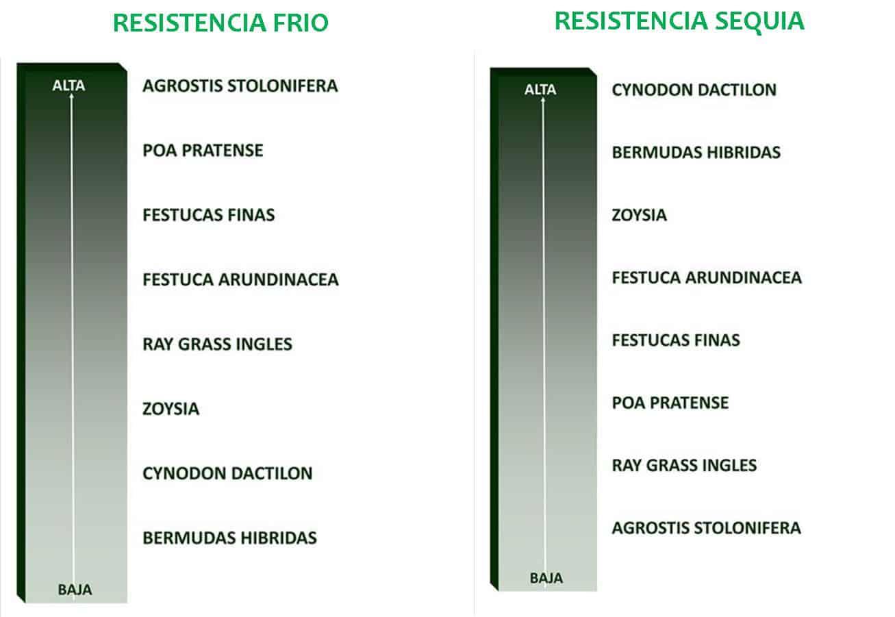 FRIO_SEQUIA