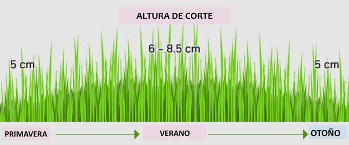 altura_corte_estacional