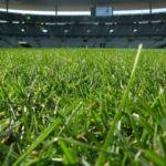 Los 10 Estadios de Fútbol con mejor césped de Europa