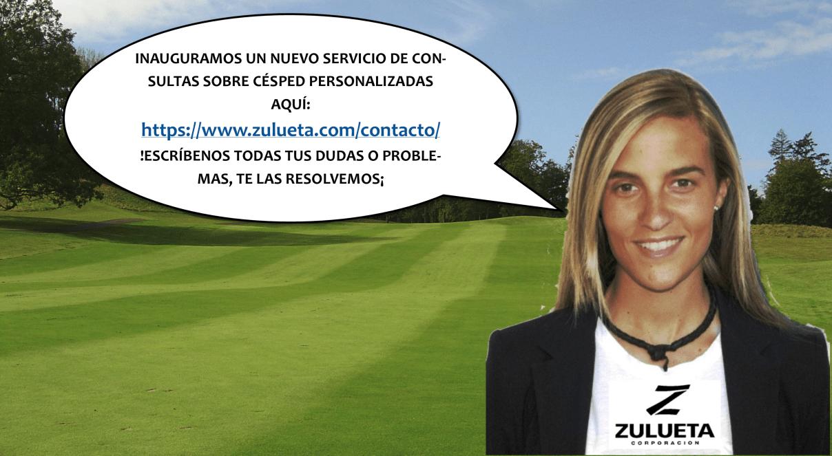 contactanos_zulueta