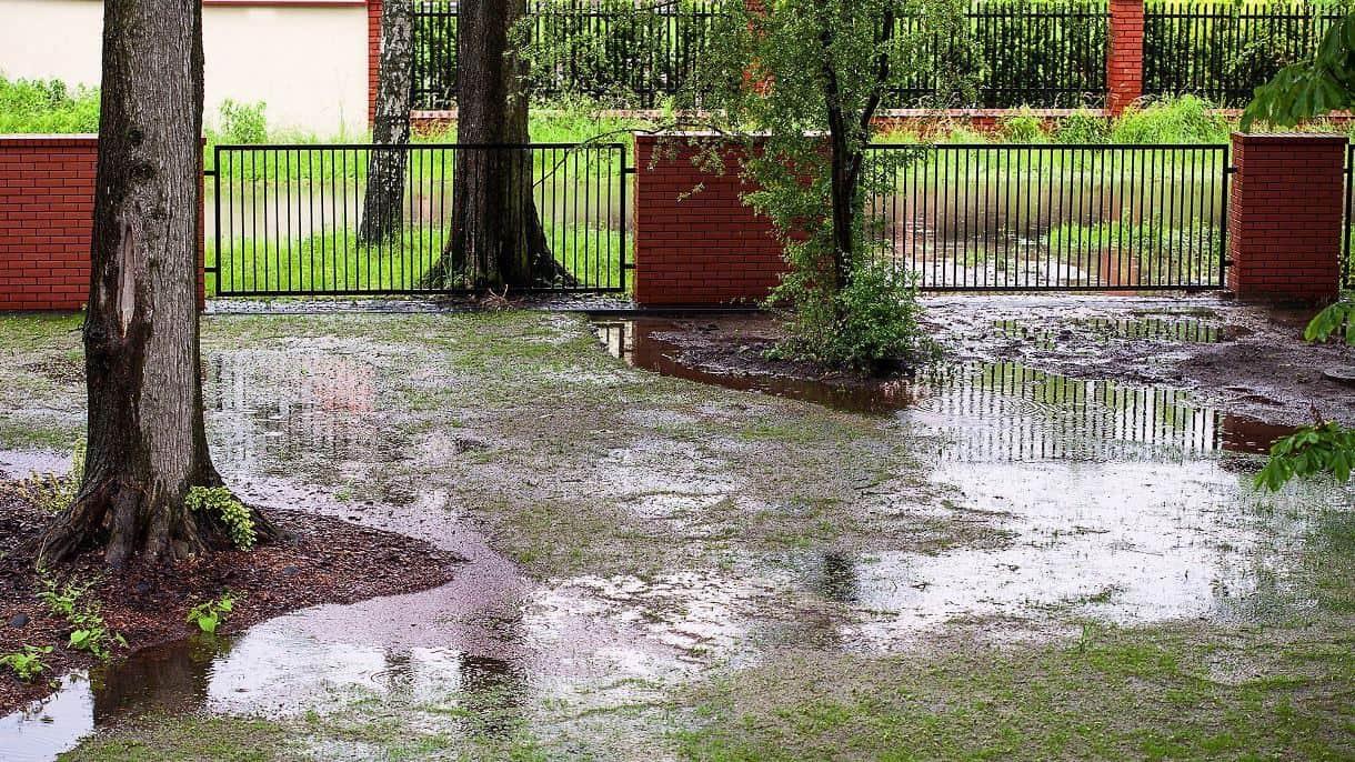 cesped-encharcado_inundado